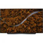 image produit TV OLED LG OLED65CX6