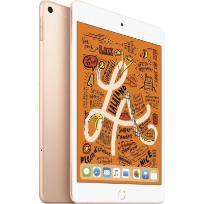 image Apple iPad mini 5 Wi-Fi + Cellular (64 Go) - Or (2019)