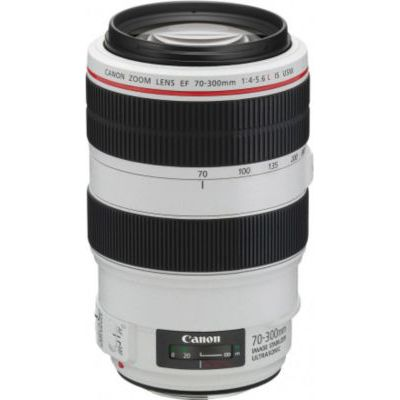 image Canon Objectif EF 70-300mm f/4-5.6 L IS USM