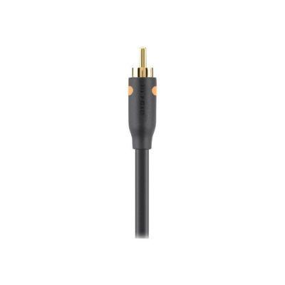 image Belkin - Câble Audio RCA, M/M avec Connecteurs Plaqués or - 2M - Noir