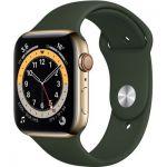 image produit AppleWatch Series6 (GPS+ Cellular, 44 mm) Boîtier en acier inoxydable or, Bracelet Sport vert de Chypre