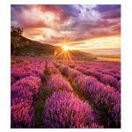 image produit Samsung Paroi LED LH015IFHTAS/EN - livrable en France