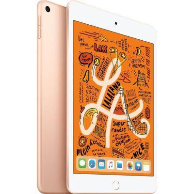 image Apple iPad mini 5 Wi-Fi (256 Go) - Or (2019)